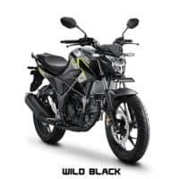 Honda CB150R StreetFire Wild Black