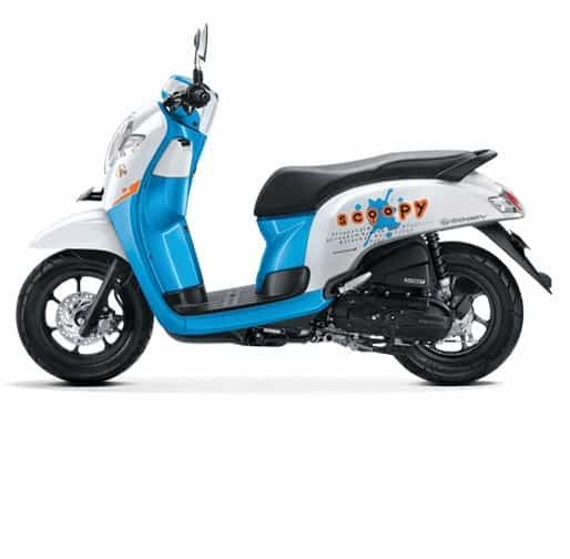 scoopy esp playful white blue