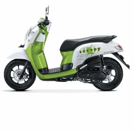 scoopy esp playful white green