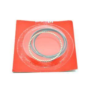 Ring Set Piston (Std) 13011K25305