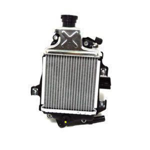 Radiator-Assy-19100K59A11