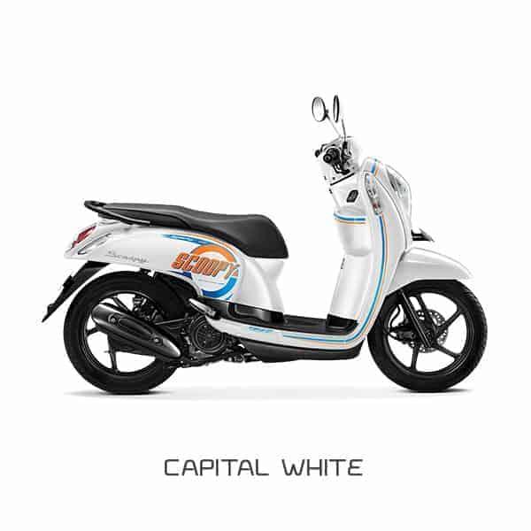 Honda-Scoopy-eSP-Capital-White