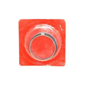 Ring-Set-Piston-(1.00)-13015GN5962