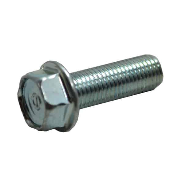 Bolt-Flange-10X30-957011003000