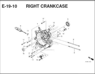 E19-10 Right Crankcase Cover
